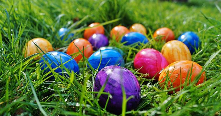 We are searching Easter Eggs on Monday